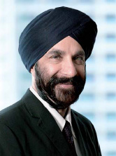 Mr Davinder Singh, s/o Amar Singh<br>Independent Director